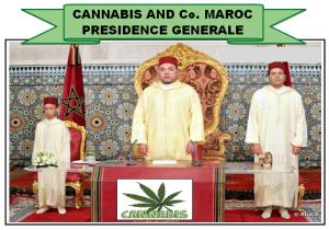 cannabis-vi